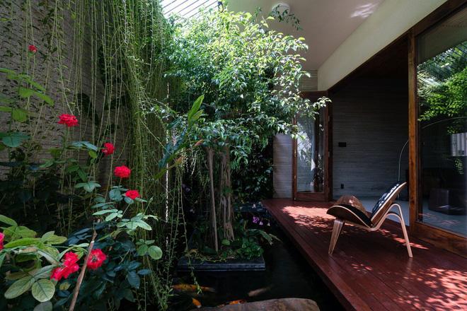 Mãn nhãn có ngôi nhà ngập ánh sáng, nội thất toàn bằng gỗ sang trọng - Ảnh 4.