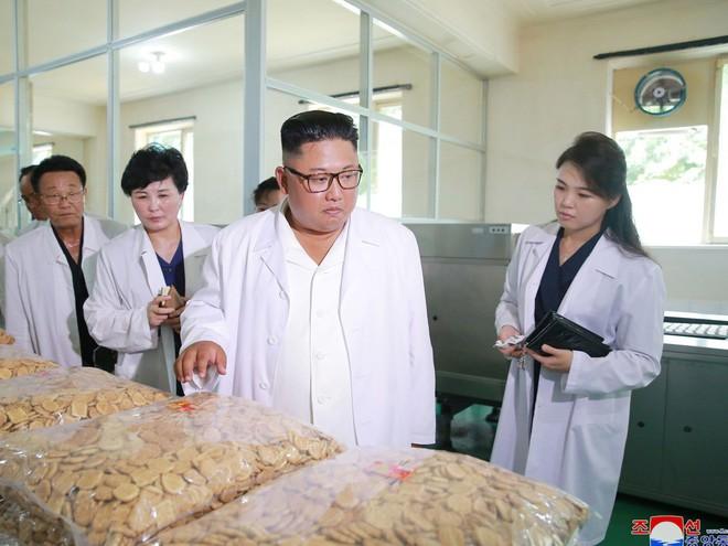 Phu nhân Triều Tiên Ri Sol-ju tái xuất, xinh đẹp rạng rỡ trong chuyến thị sát cùng chồng - Ảnh 4.