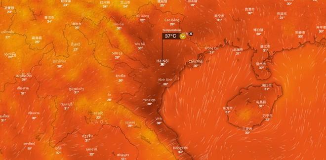 Không chỉ Việt Nam, khắp mọi nơi thế giới đều đang phải hứng chịu đợt nắng nóng kỷ lục - Ảnh 4.