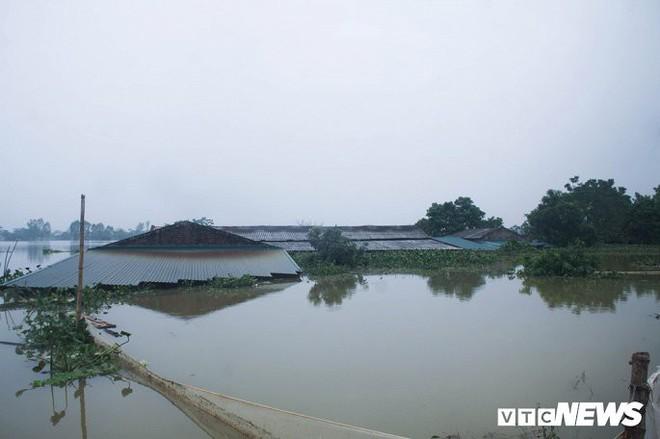 Dân vùng rốn lũ Hà Nội tấp nập chèo thuyền đi lấy nước miễn phí - Ảnh 2.