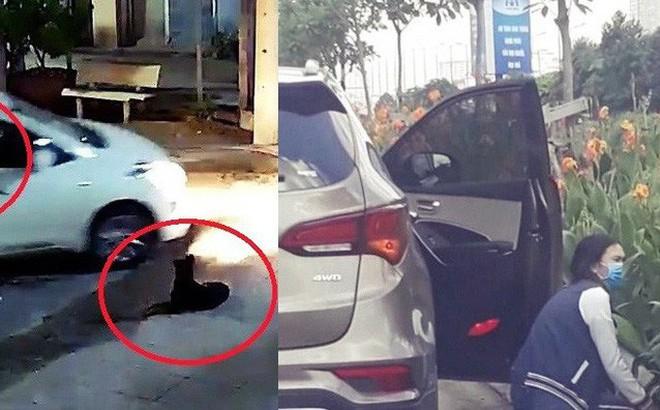 Đừng mặc định đi ô tô là người sang trọng: Bứng cây cổ, trộm chó cũng bước xuống từ đây