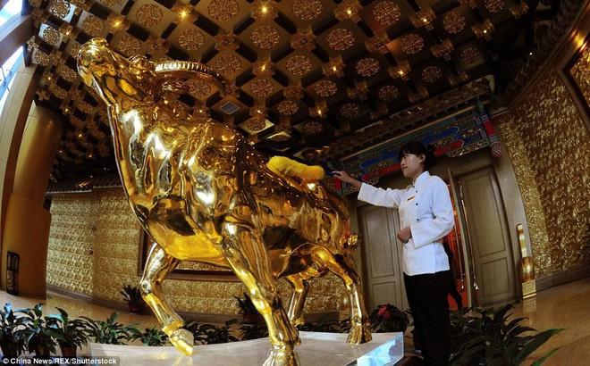 """Đằng sau """"vỏ bọc hoàng kim"""": Biểu tượng thịnh vượng số 1 Trung Quốc vật lộn trong nợ nần"""