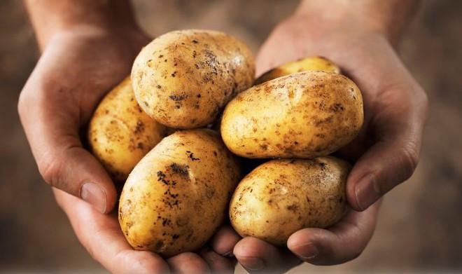 Hại sức khỏe vì ăn khoai tây sai cách - Ảnh 1.