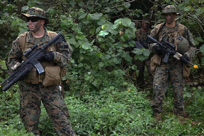 Lộ diện mẫu quân phục ngụy trang mới của QĐND Việt Nam: Có gì đặc biệt? - Ảnh 7.