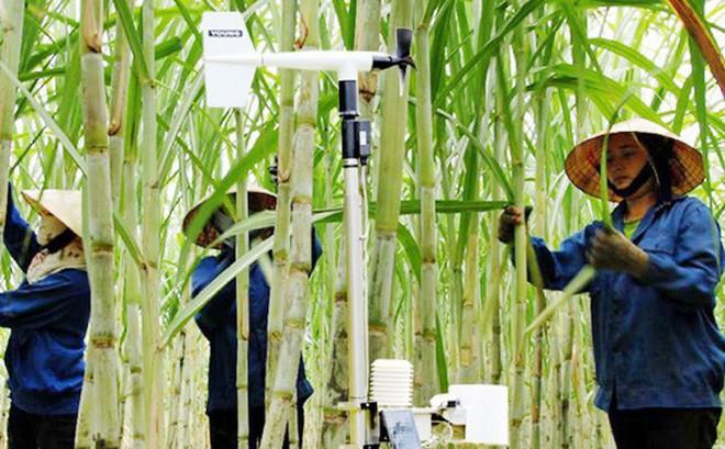 Báo Nhật ngỡ ngàng vì doanh nghiệp nông nghiệp Việt Nam có ao tôm sử dụng trí thông minh nhân tạo, nuôi bò dùng chip, cảm biến và robot