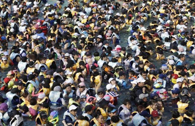 24h qua ảnh: Bể bơi đông đặc người giữa nắng nóng khủng khiếp ở Hàn Quốc - Ảnh 4.