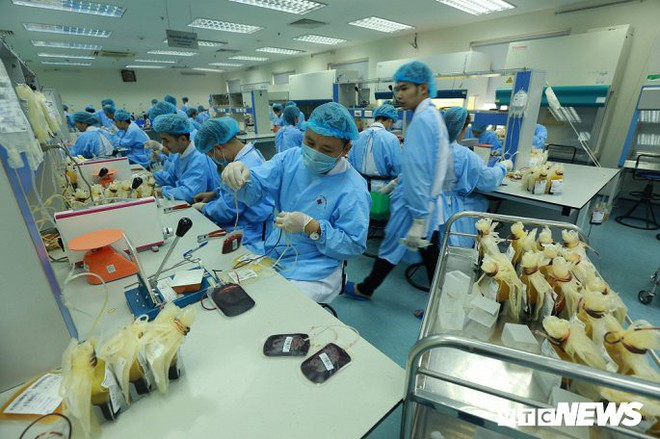 Ảnh: Bên trong phân xưởng điều chế máu lớn nhất miền Bắc - Ảnh 9.