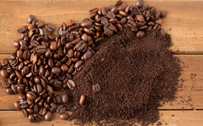 Đừng vứt bã cà phê nữa, chỉ cần biết tận dụng rồi bạn sẽ bất ngờ