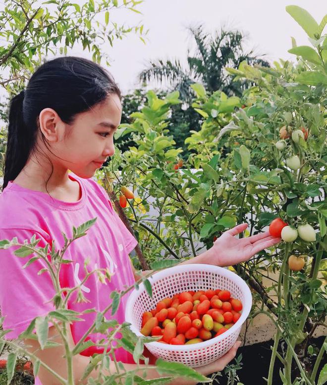 Điểm mặt 9 thiên kim tiểu thư nhà sao Việt: Xinh đẹp ngời ngời, không Hoa hậu thì cũng là mỹ nhân trong tương lai - Ảnh 44.