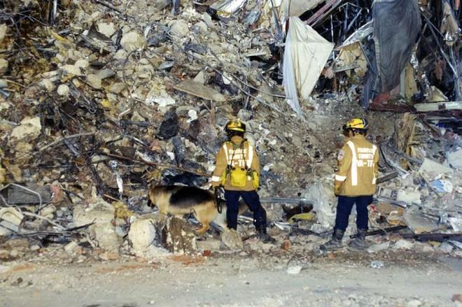 [ẢNH] Những bức hình đột nhiên biến mất, mới tìm lại được về vụ khủng bố 11/9 - Ảnh 5.