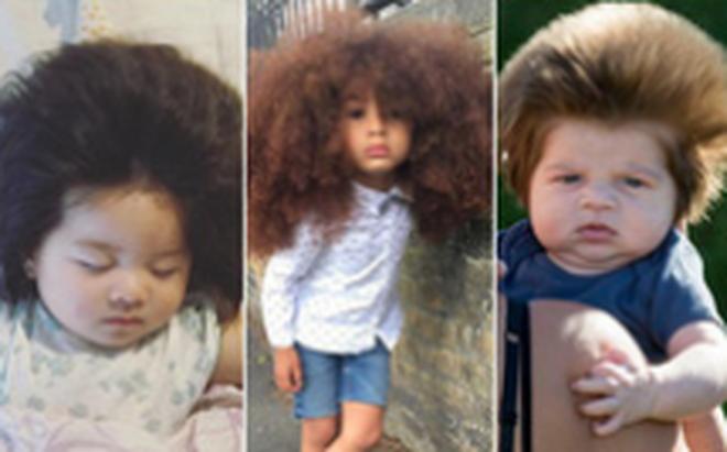 Sở hữu mái tóc xù ấn tượng, 3 nhóc tì này bỗng nổi như cồn trên mạng xã hội chỉ sau một đêm