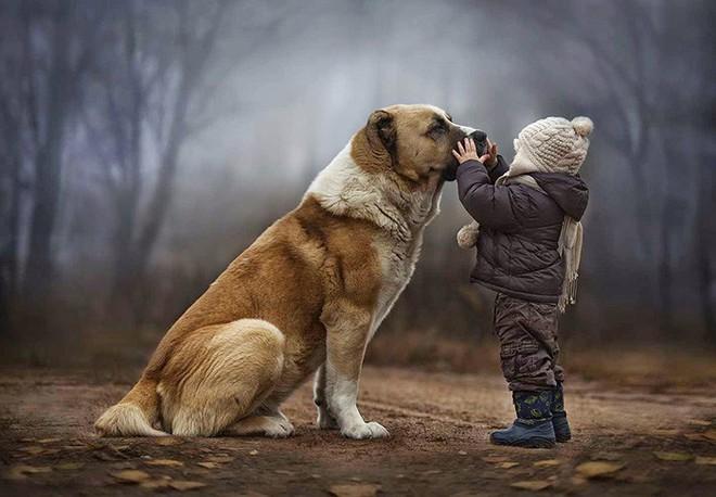 Sống cạnh con người khiến loài chó chịu khổ rất giỏi, và chúng biết ghen tuông! - Ảnh 4.