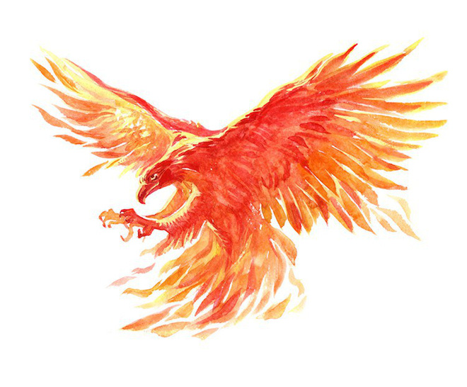 Bộ tứ linh huyền bí trong truyền thuyết của Nhật Bản, ba trên bốn vị linh thú khá giống với Việt Nam - Ảnh 4.
