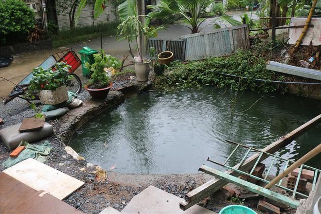 Vì sao khu villa hạng sang bậc nhất Sài Gòn bỏ hoang phí nhiều năm? - Ảnh 4.
