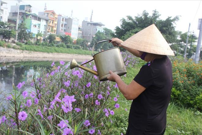 Đẹp ngỡ ngàng với con đường hoa tím bên dòng sông Tô Lịch - Ảnh 5.