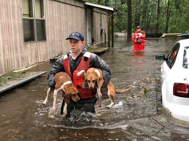 Ảnh: Bờ Đông nước Mỹ tan hoang, nước không ngừng dâng cao do bão Florence - Ảnh 6.