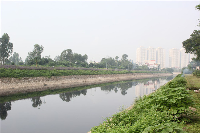 Đẹp ngỡ ngàng với con đường hoa tím bên dòng sông Tô Lịch - Ảnh 8.