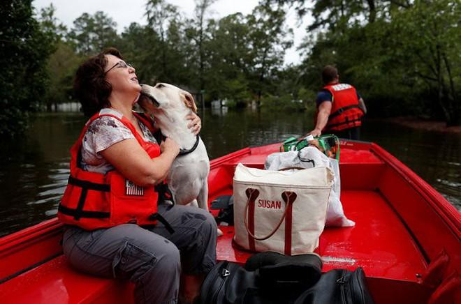 Ảnh: Bờ Đông nước Mỹ tan hoang, nước không ngừng dâng cao do bão Florence - Ảnh 8.