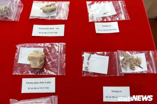 Ảnh: Xương người tiền sử trong hang động núi lửa được phát hiện ở Đắk Nông - Ảnh 12.