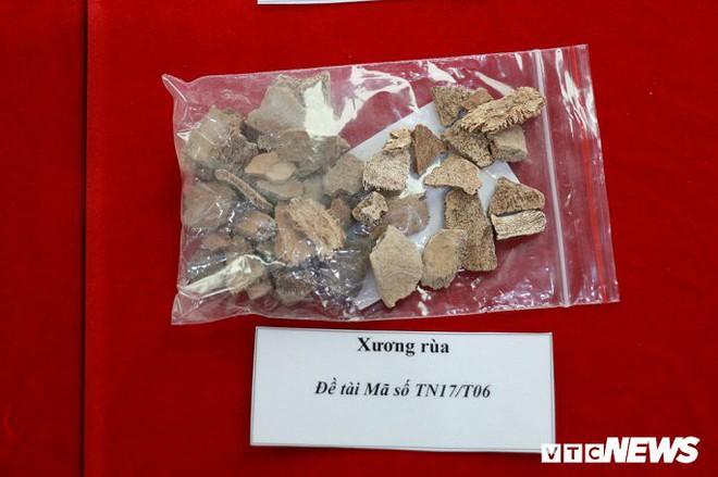 Ảnh: Xương người tiền sử trong hang động núi lửa được phát hiện ở Đắk Nông - Ảnh 14.