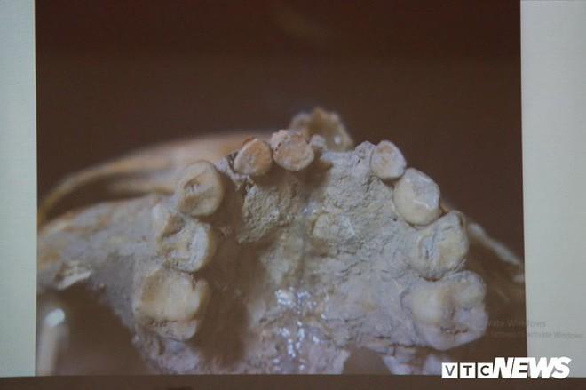 Ảnh: Xương người tiền sử trong hang động núi lửa được phát hiện ở Đắk Nông - Ảnh 7.