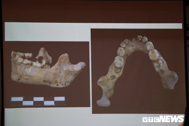 Ảnh: Xương người tiền sử trong hang động núi lửa được phát hiện ở Đắk Nông - Ảnh 8.