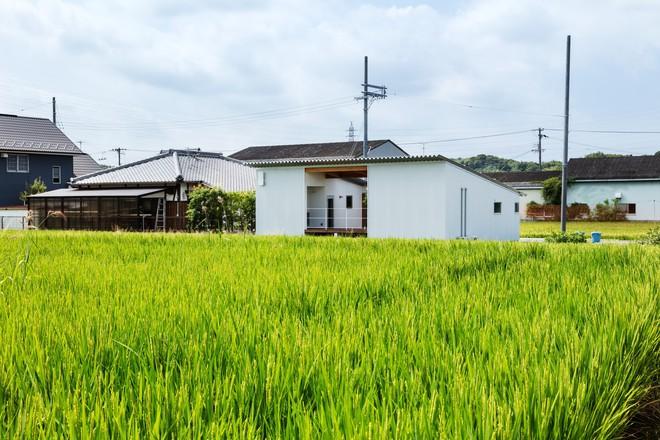 Đỉnh như ngôi nhà cấp 4 Nhật Bản: Xây giữa cánh đồng vẫn được khen hết lời - Ảnh 2.