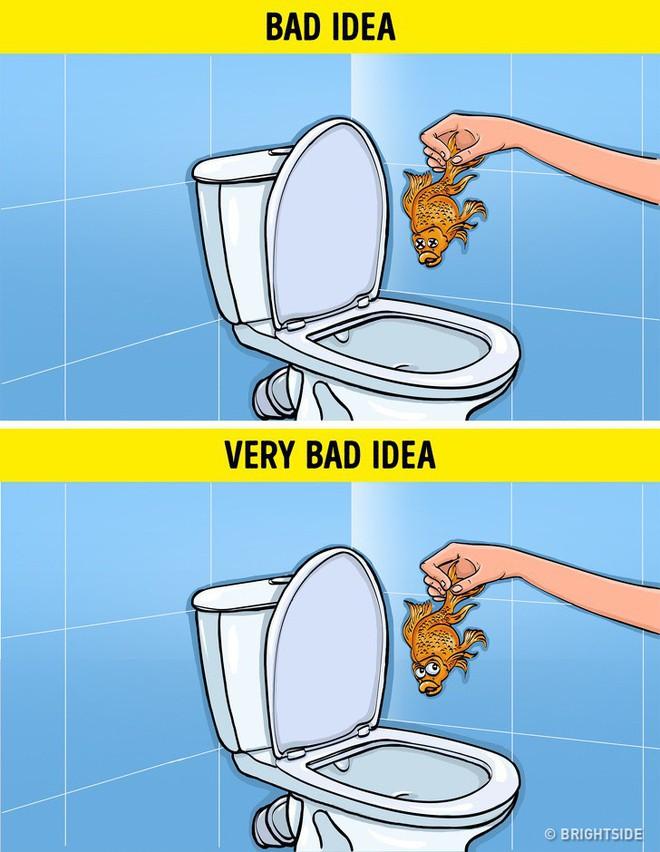 8 loại rác tuyệt đối không vứt vào bồn cầu nếu không muốn có ngày WC ngập ngụa trong nước thải - Ảnh 2.