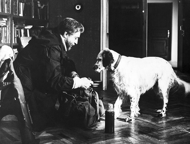 Những chú chó nổi tiếng của nước Nga - Ảnh 7.