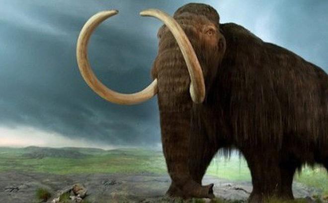 """""""Công viên kỷ Jura"""" sắp ra mắt tại Nga với sự """"hồi sinh"""" của voi ma mút"""