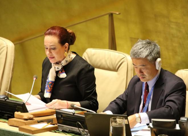 Đại hội đồng Liên hợp quốc dành một phút mặc niệm Chủ tịch nước Trần Đại Quang - Ảnh 1.