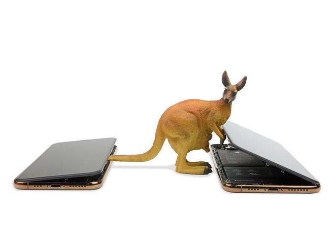 Mổ iPhone XS Max và XS: Phát hiện nhiều chi tiết Apple chưa từng đề cập - Ảnh 8.