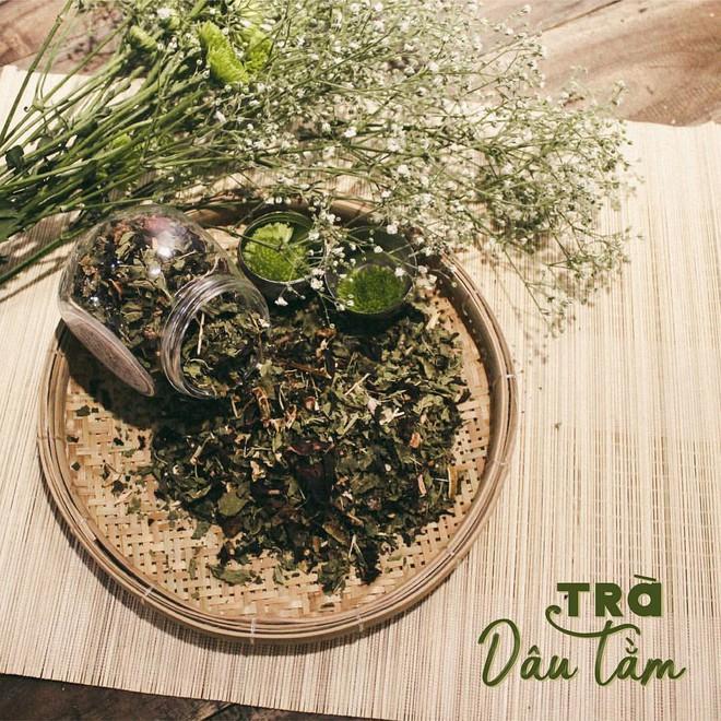 Kỳ diệu chiếc lá nhỏ trong vườn Việt: Thanh nhiệt, giải độc, sạch mạch máu, tiêu sưng viêm - Ảnh 1.