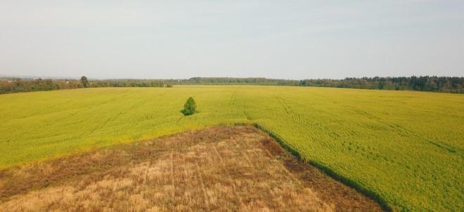 Hành trình ấn tượng của TH: Từ đồng cỏ hoang vu tới nhà máy sữa công suất lớn nhất nước Nga - Ảnh 2.