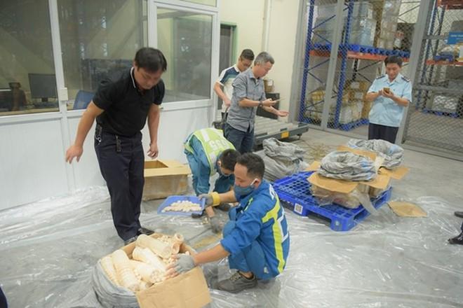 Gần 1 tấn vẩy tê tê, ngà voi trong 2 lô hàng đi máy bay về Việt Nam - Ảnh 2.