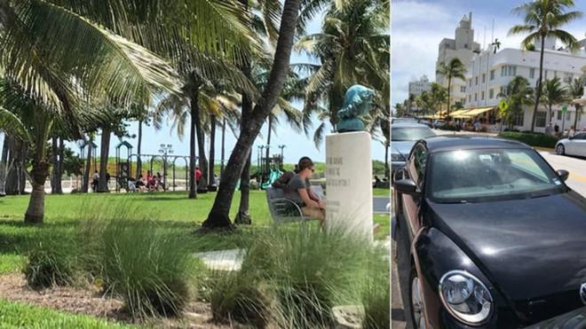 """Mỹ: Dân chúng đi dạo công viên, ngỡ ngàng được xem """"phim người lớn"""" trên ô tô miễn phí - Ảnh 1."""