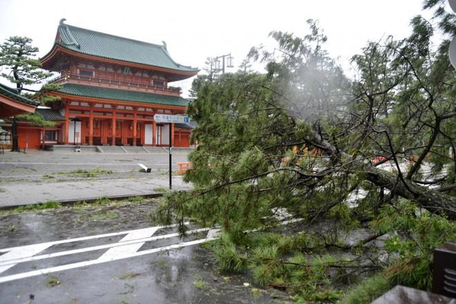 Vì sao siêu bão năm 1993 được lấy làm mốc để so với bão Jebi đang tấn công Nhật Bản? - Ảnh 2.