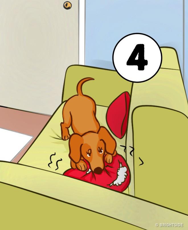 Nước sôi, con khóc, có điện thoại, cún gặm gối: Bạn xử lý số mấy trước, bí mật sẽ mở ra - Ảnh 4.
