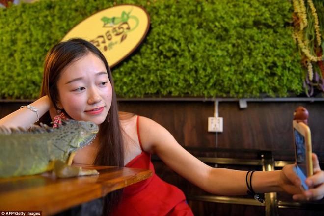 Giới trẻ Campuchia bị hút hồn với quán cà phê bò sát - Ảnh 3.