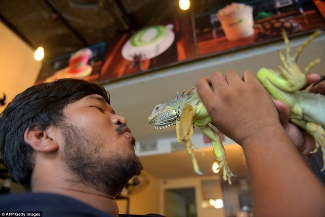 Giới trẻ Campuchia bị hút hồn với quán cà phê bò sát - Ảnh 6.