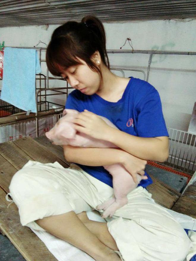 Câu chuyện nhỏ đáng yêu của nữ sinh sáng làm luận án, chiều nâng niu đàn lợn - Ảnh 1.