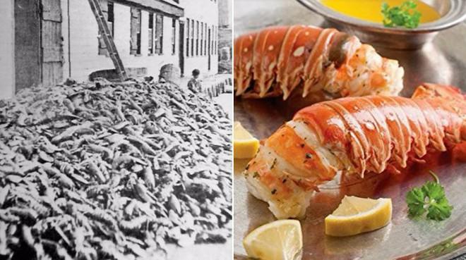 Từng là thứ phế phẩm, đem làm phân bón, món ăn này đã trở thành thực phẩm đắt đỏ trong các nhà hàng sang trọng - Ảnh 1.