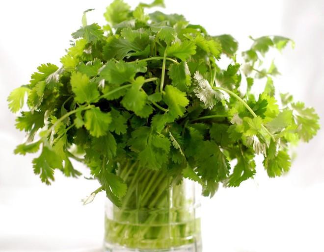 Tiết lộ loại rau thơm được xem là dược phẩm xanh làm sạch thận, ấm dạ dày, tráng dương - Ảnh 3.