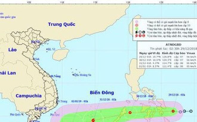 Áp thấp nhiệt đới giật cấp 9 có thể mạnh thành bão hướng vào Biển Đông