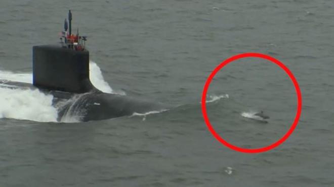 Video: Cảnh tượng cá heo đua tốc độ với tàu ngầm Mỹ - Ảnh 1.