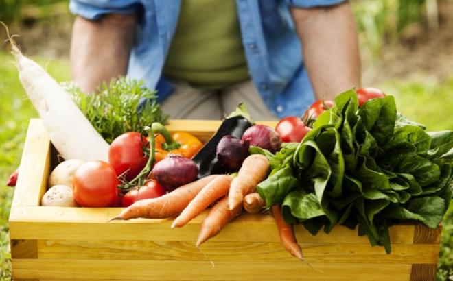 Bí quyết sống thọ khỏe mạnh: Duy trì 4 nguyên tắc ăn uống cốt lõi, bệnh tật sẽ rời xa bạn