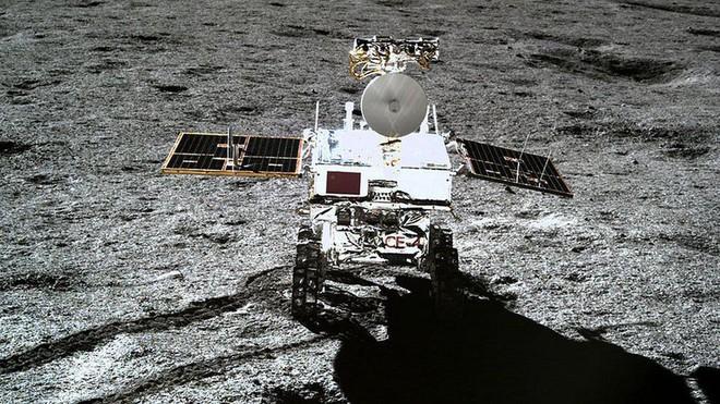 Chúng ta có một tin cực buồn về mầm cây đầu tiên mọc trên Mặt trăng của Trung Quốc - Ảnh 4.