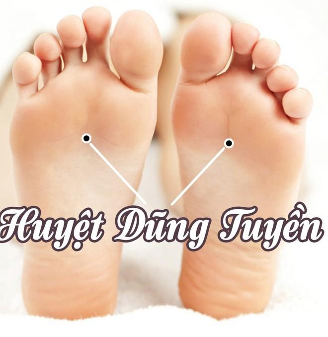 10 lời khuyên ngắn gọn của Quốc y Đại sư TQ: Bí quyết dưỡng sinh xua đuổi bệnh tật - Ảnh 5.