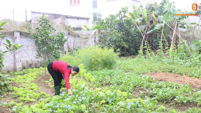 Về thăm nhà Văn Hậu, phát hiện món quà đầu tiên em út ĐT Việt Nam mua cho cha mẹ bằng đồng lương kiếm được - Ảnh 11.