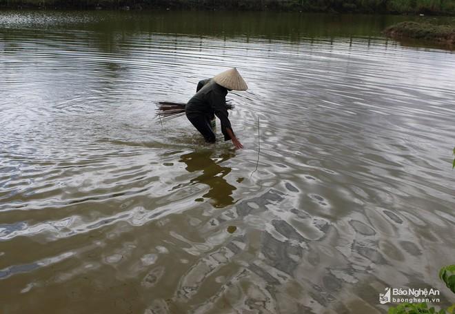 Mục sở thị những kiểu săn cua độc đáo ở Nghệ An - Ảnh 9.